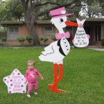 Pink Stork Sign with Pink Sibling Star