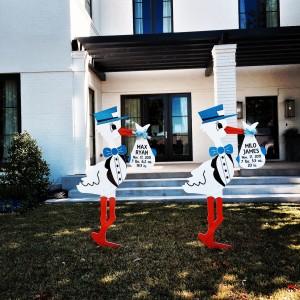 Stork Worth - Twin Boys - Birth Announcement